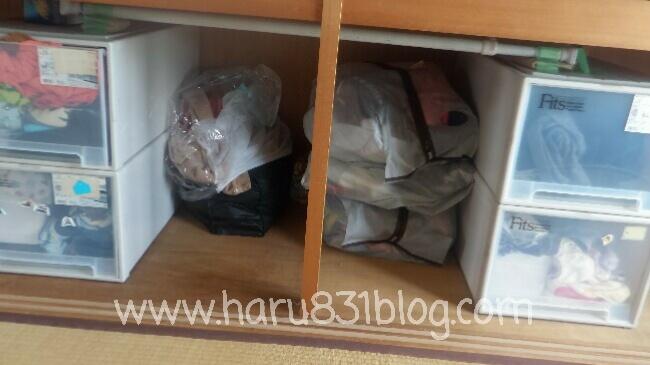 オフシーズン収納は不織布収納袋につめている写真