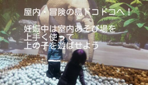 屋内・冒険の島ドコドコ(立川高島屋)へ!妊娠中の上の子の遊びに