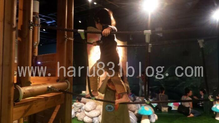 ドコドコのツリーデッキで遊んでる写真